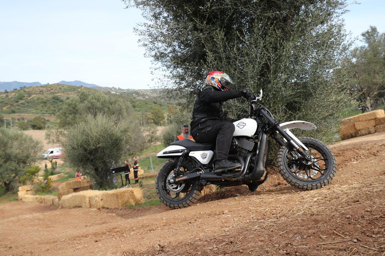 Harley-Davidson Scramble
